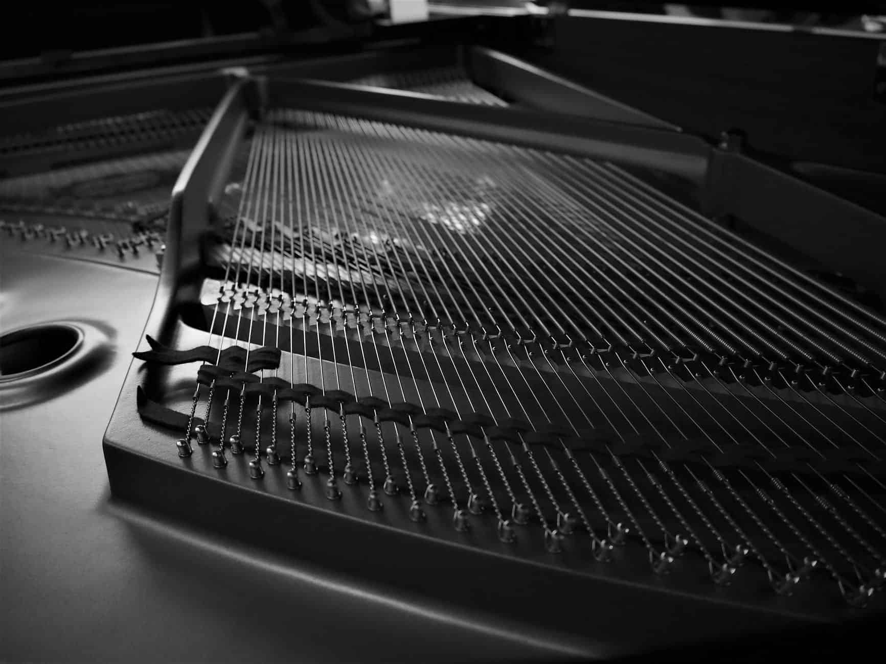 close up of a musical instrument